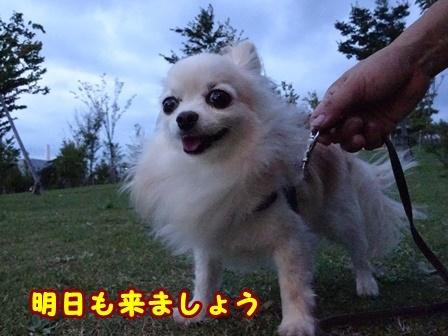 blog9884a.jpg