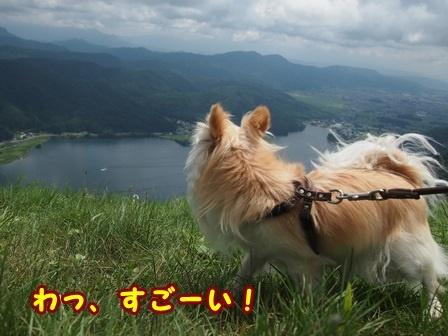blog9951a.jpg