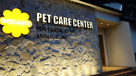 犬の歯医者さん1
