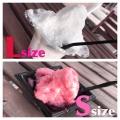 かき氷2種類