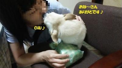 DSC_0993_convert_20170817093028.jpg