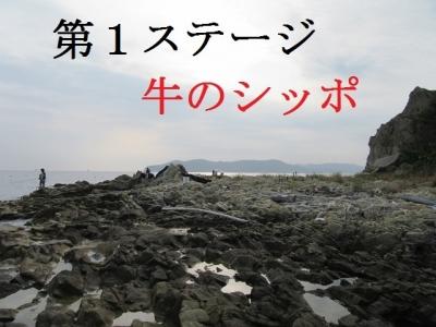 17729IMG_0089.jpg