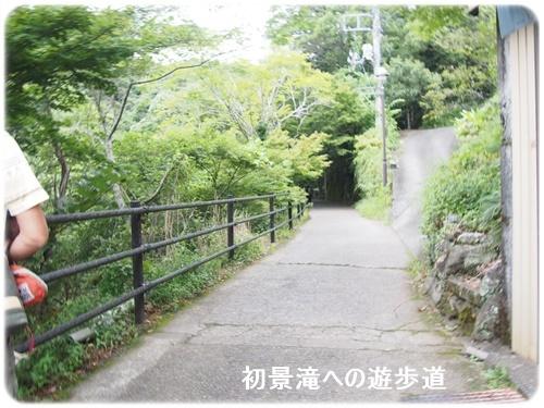 川沿いの遊歩道