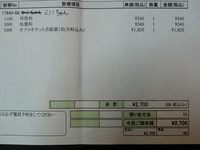 ミノンちゃん手術 011