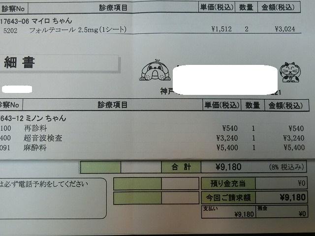 ミノンちゃん手術 014