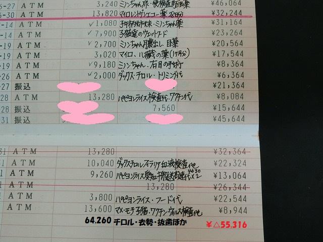 7月の収支報告 004