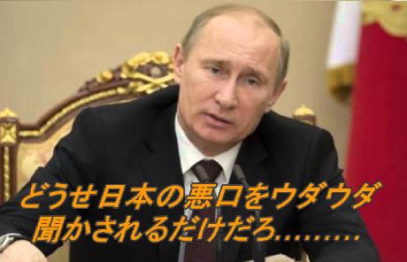 プーチン  日本