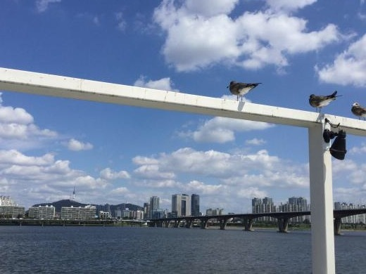 170915漢江遊覧船