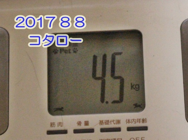 2017 08 10_4812