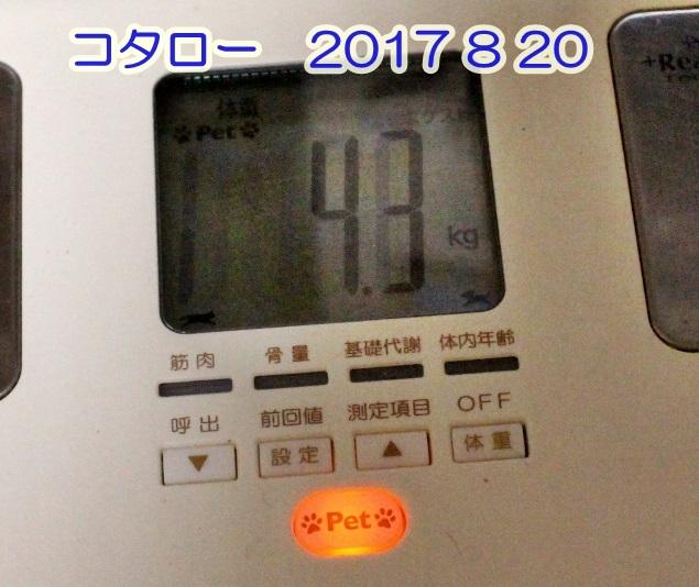 2017 08 20_4893