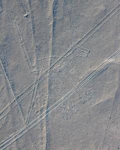 Líneas_de_Nazca,_Nazca,_Perú,_2015-07-29,_DD_50