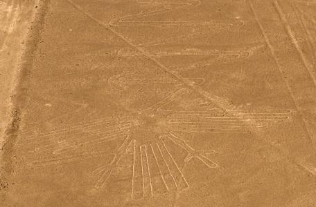 Lignes_de_Nazca_oiseau.jpg