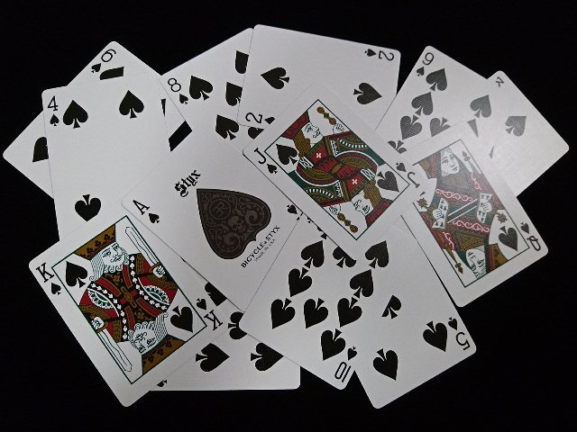 Styx Playing Cards (BICYCLE) (6)