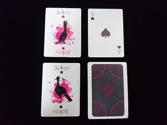 Suck My Deck Playing Cards (5)