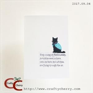 20170904_cat_scarf.jpg