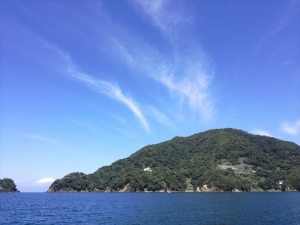 田子浮島根田子沖の島 (2)