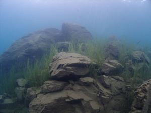 6本栖湖癒やしの風景 (1)