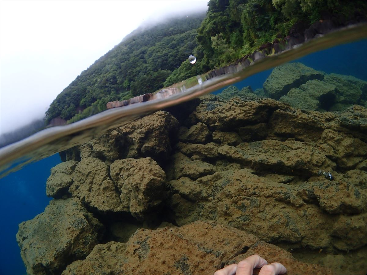 6本栖湖癒やしの風景 (3)