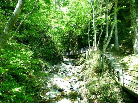 栃木・竜化の滝<トリップノート7・8月公開記事>