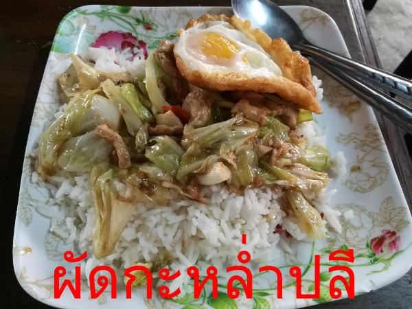 ผัดกะหล่ำปลี タイ料理メニュー
