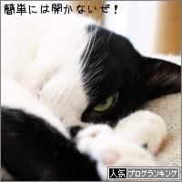 dai20170711_banner.jpg