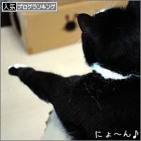 dai20170712_banner.jpg