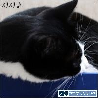dai20170726_banner.jpg