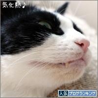 dai20170727_banner.jpg