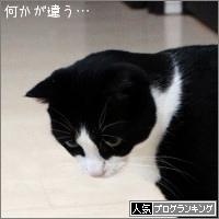 dai20170906_banner.jpg