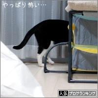dai20170908_banner.jpg