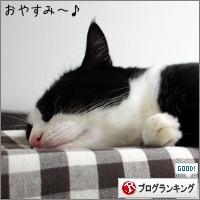 dai20170913_banner.jpg