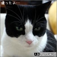 dai20170915_banner.jpg