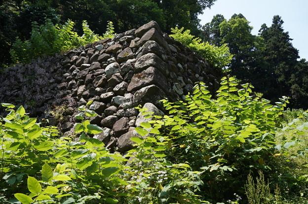 修繕後の石垣