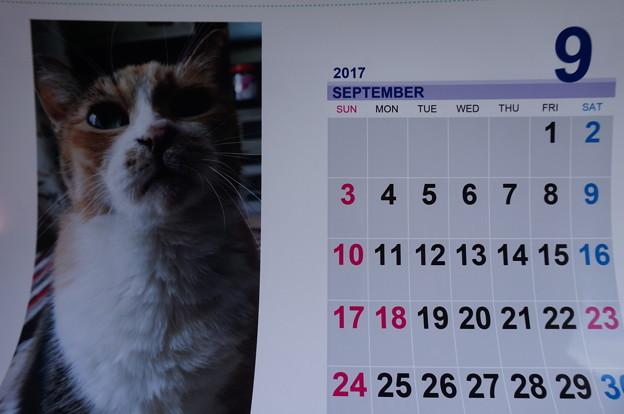 2017.9のカレンダー