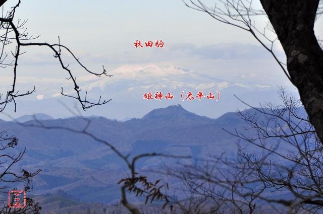 ykt4h683_12.jpg