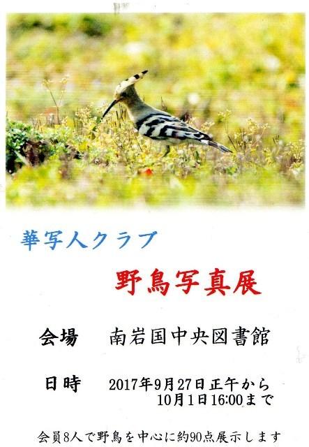 華写人クラブ野鳥写真展