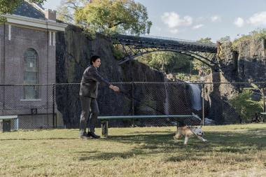『パターソン』 主人公パターソン(アダム・ドライバー)と愛犬マーヴィン。背景には滝が見える。