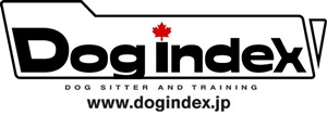 logo dogindex