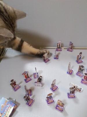 猫 大銀魂展 アクリルminiフィギュア