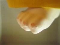 市松さんの足