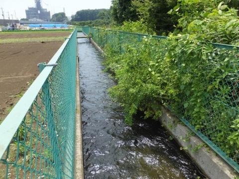 目久尻川用排水路組合の用水路