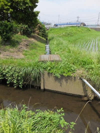 目久尻川用排水路組合の左岸用水路
