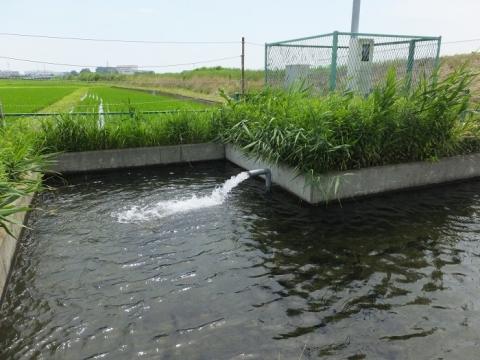 藤沢市宮原・田んぼの中の取水施設