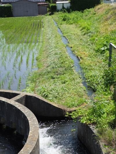 西天竜幹線水路「松島10号」円筒分水工と用水路