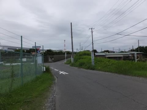 相模川旧堤防・寒川浄水場付近