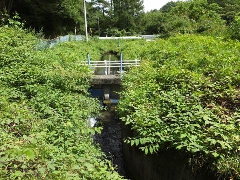 鷽ノ口円形分水・石堂川取水口から始まる導水路