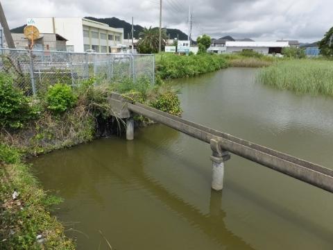 高溝分水工からの支線用水路