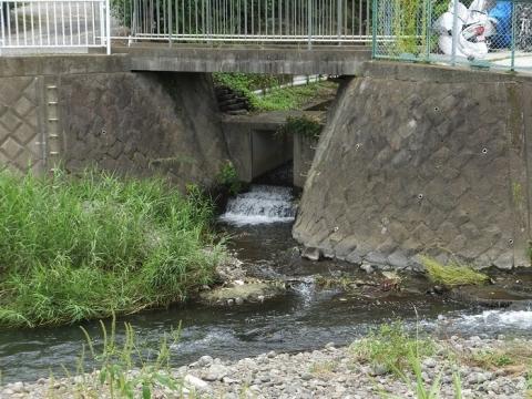 小山谷戸堰用水路終点・荻野川に合流