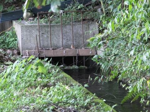 愛川町・尾山水利組合の用水路