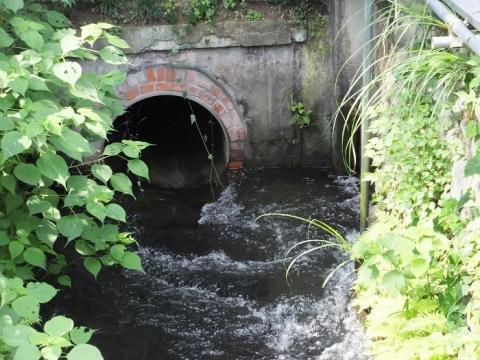 愛川町・丸山耕地水利組合の用水路